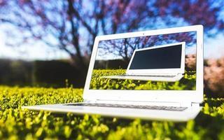 ordinateur portable dans l'herbe photo