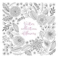 Hand-drawn, floral sketch collection vector