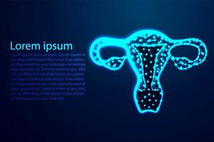 Female reproductive system low poly design vector