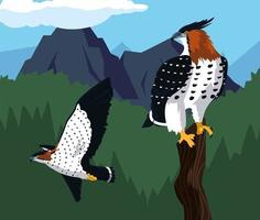 Imposing hawk in the branch with landscape vector
