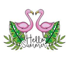 Flamingos with tropical leaves for summer design vector