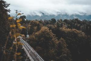 Train tracks near forest under cloudy sky photo
