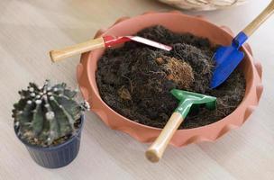 palas de jardinería y tierra