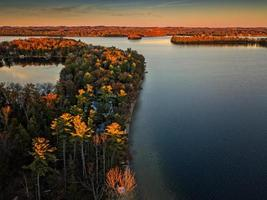 Aerial view of trees near a body of water photo