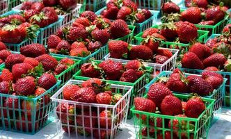 Strawberries in small baskets