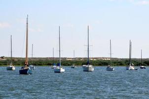 Sailboats moored on the river