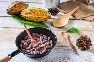 Raw cacao beans and cocoa pods
