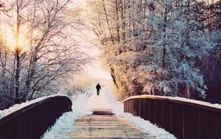 Winter landscape with bridge, trees and snow