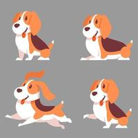 Beagle dog in different poses vector