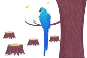 Blue macaw parrot on branch