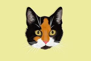 Three color furry cat hand drawing