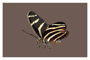 Beautiful cartoon butterfly hand drawing