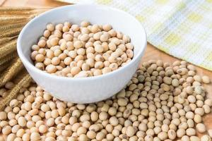 Soybean in white Bowl