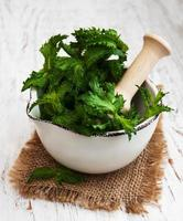 Mortar with green mint photo