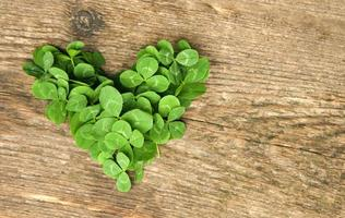 heart of clover photo