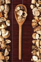 Wooden spoon with mushroom