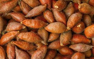 Salacca texture. photo