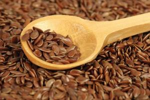 linseed photo
