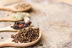 pimenta vermelha, alho, folha de louro, especiarias em colheres