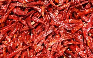 Dried red chilli, food ingredient and background photo