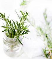 Fresh rosemary bound and sprigs in a glass