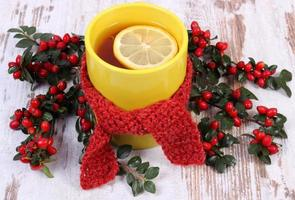 Cup of tea with lemon wrapped woolen scarf and cotoneaster