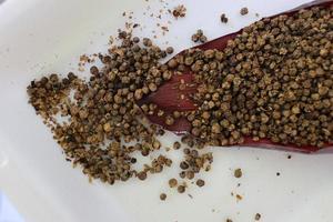 pimienta seca