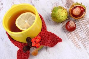 Cup of tea with lemon wrapped woolen scarf, warming beverage
