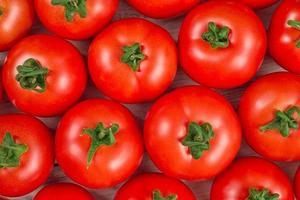 Vista superior del fondo de muchos tomates rojos frescos