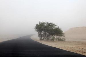 Sandstorm in the desert photo