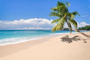 Deserted island photo