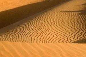 deserto de Abu Dhabi