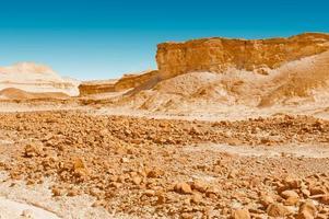 desierto de piedra foto
