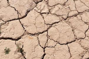 Lake bed drying up due to drought photo