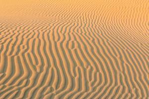 ondas de areia cruzam