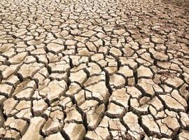 Drought breaks ground fissures