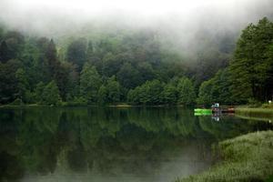 lago del bosque de pinos- artvin foto