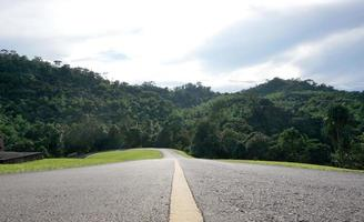 Road leading to the forest with
