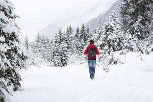 Young man hiking in wintry forest landscape photo