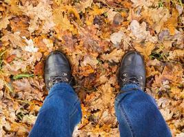 Feet in an oak forest.
