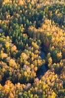 Forest river in autumn, top view photo