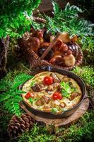 Huevos revueltos caseros sobre musgo en el bosque foto