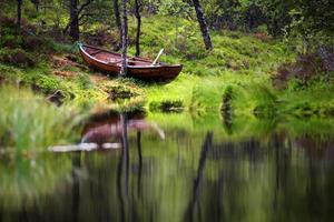 Lake landscape with green forest in Norway
