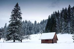 wooden house in forest at winter time