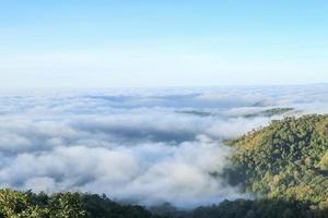 mist northern of thaliand photo