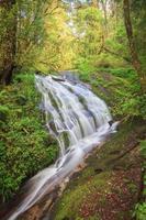 Cascade dans la forêt à feuilles persistantes de la colline de doi inthanon