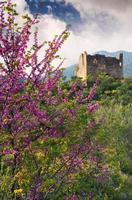 ruïnes van een oude toren in landelijke omgeving