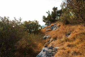 Stone path in Croatia