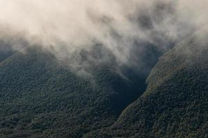 vapour rising from forested slopes