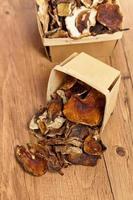 Dried Mushrooms photo